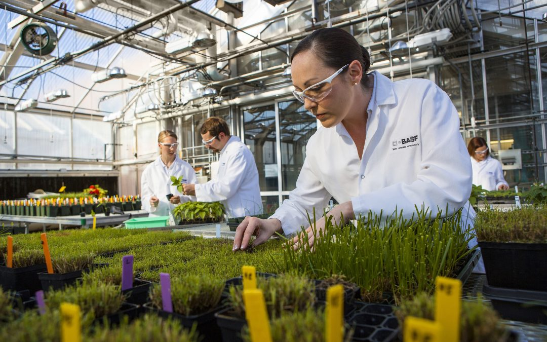 BASF 'milks' Plant Advanced Technologies for defence biomolecules to boost 2015 sales