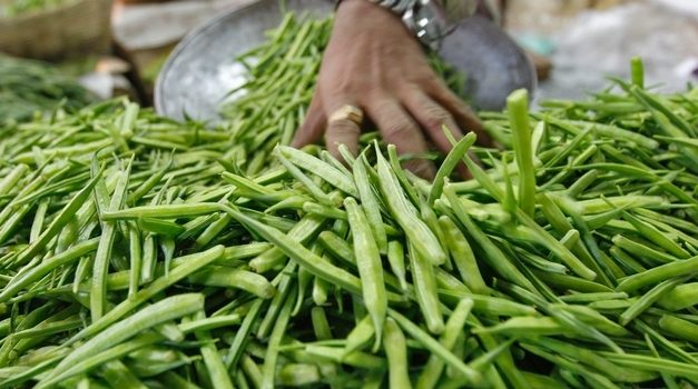 L'Oreal and Solvay team up for three-year sustainable Guar farming initiative in India