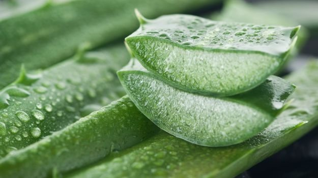 No Aloe found in own-brand Wal-Mart, CVS and Target products