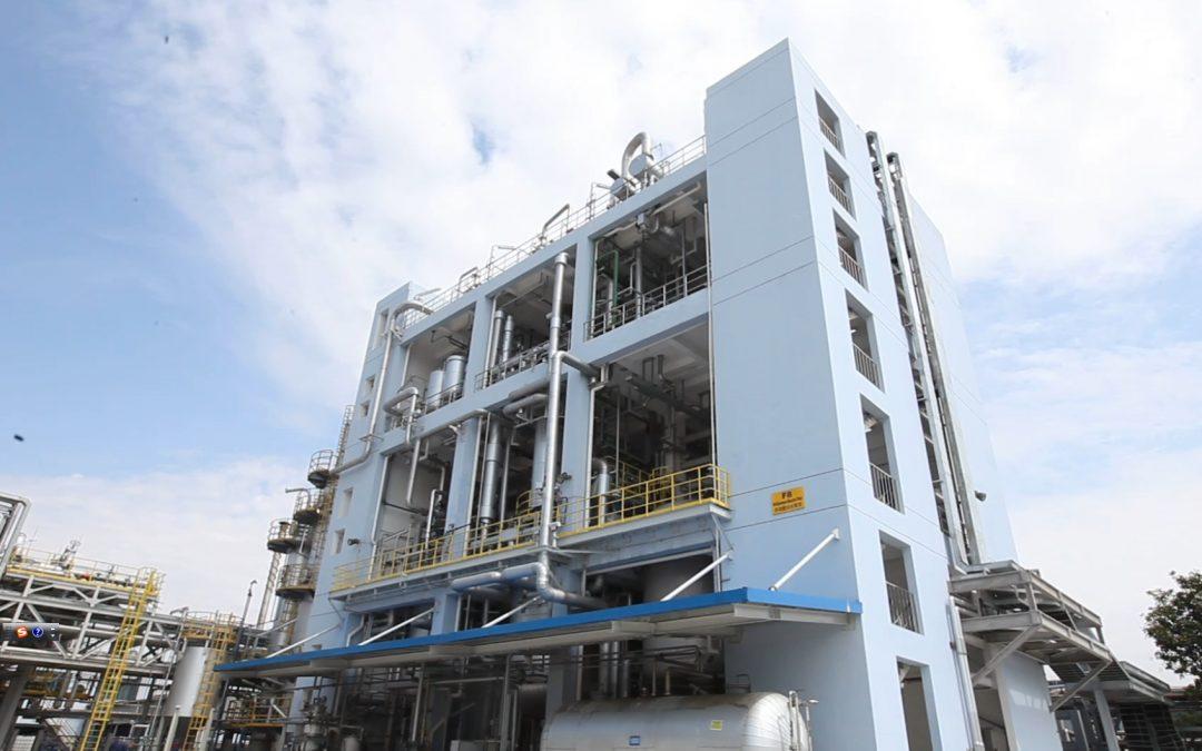 BASF cuts the ribbon on US$22 million Shanghai plant