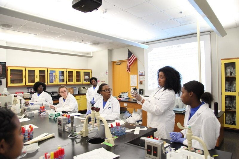 L'Oréal USA announces winners of its 2017 Changing the Face of STEM mentoring grants