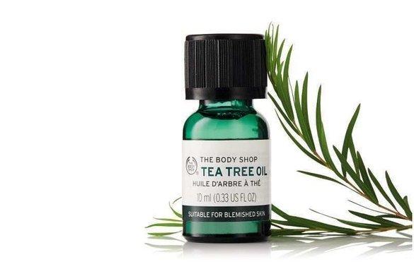 Kenyan farmers switch to tea tree crops to meet The Body Shop demand