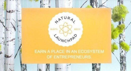 Women wanted: Burt's Bees repositions Natural Launchpad to target female entrepreneurs