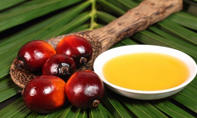 BASF announces shift to palm oil options that are exclusively certified as sustainable