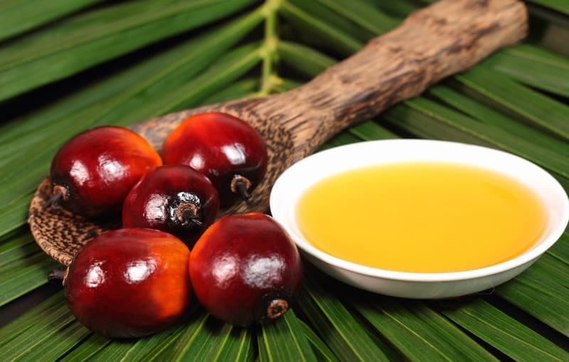 Colombia to boost palm oil production 56 percent over next 5 years
