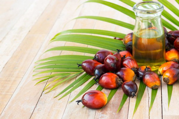 Ukraine parliament passes initial bill for the eventual ban of palm oil within the country