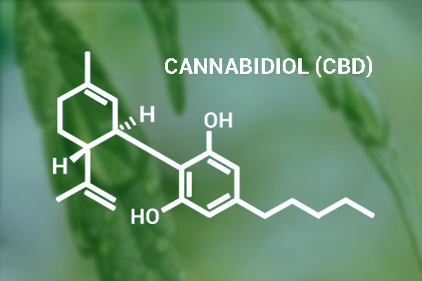 Bod Australia receives grant for cannabinoid research