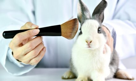 Australia passes landmark bill to ban animal testing on cosmetics