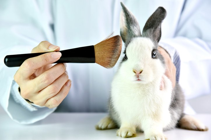 Australia passes landmark bill to ban animal testing on cosmetics