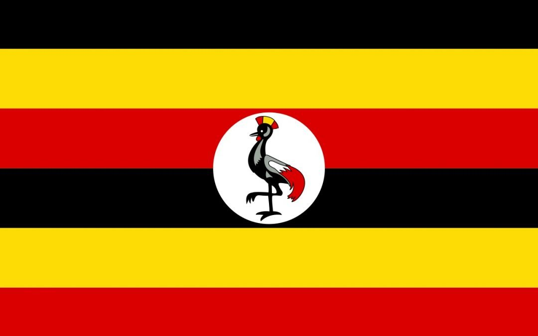 Not on my watch: Ugandan Cabinet oppose medical cannabis plan