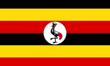 Not on my watch: Ugandan Cabinet oppose medical cannabis plan